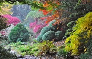 Screenshot_2019-05-21 parc botanique de haute bretagne - Recherche Google